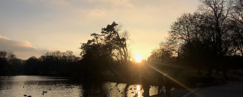 The lake in Grovelands Park